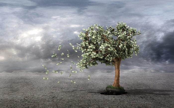 風にふかれるお金の木