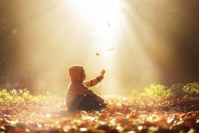 落ち葉の中に座る子供