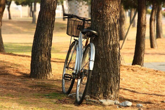 木にもたれかかる自転車